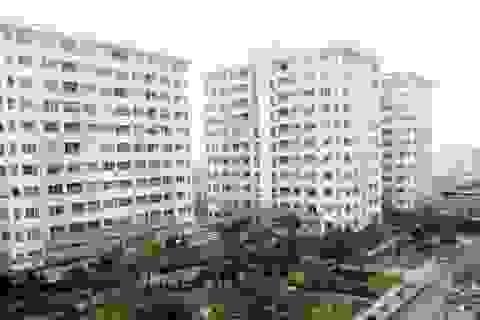 Bộ cho xây căn hộ 25m2: Tránh hệ quả đáng tiếc!