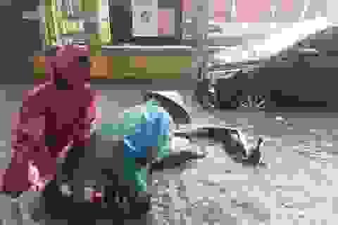 Chiều qua Hà Nội có trận mưa tháng 3 lớn nhất trong vòng 50 năm