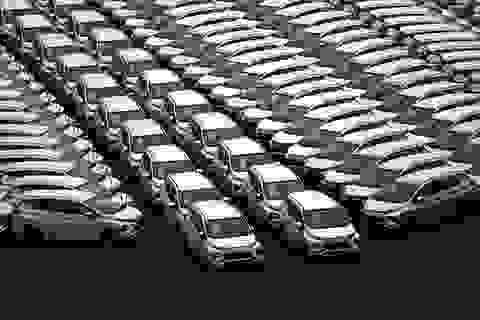 Vì sao nhập khẩu ô tô vào Việt Nam trong tháng 2 giảm mạnh?