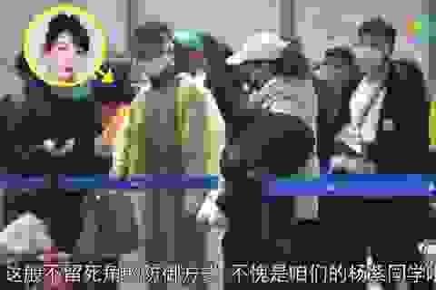 Dương Tử mặc áo mưa ở sân bay để tránh Covid-19