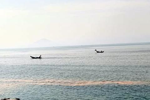 Truy nguồn gốc dải nước màu đỏ trên biển Vũng Áng
