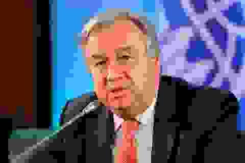 Hàng nghìn nhân viên Liên Hợp Quốc làm việc tại nhà