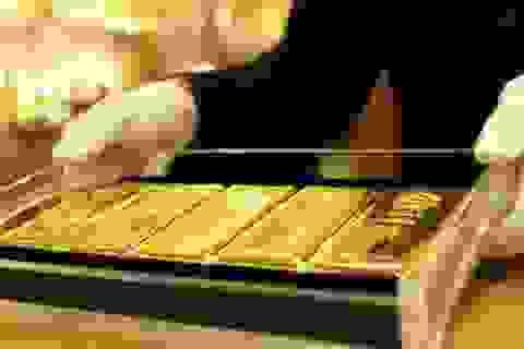 Giá vàng tiếp tục tăng cao, lập đỉnh 8 năm