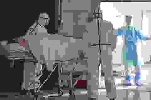 """Người đàn ông cố tình """"phát tán virus corona"""" cho người khác đã tử vong"""