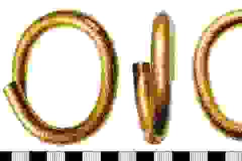 Hàng ngàn cổ vật quý từ thời trung đại được thợ săn nghiệp dư phát hiện