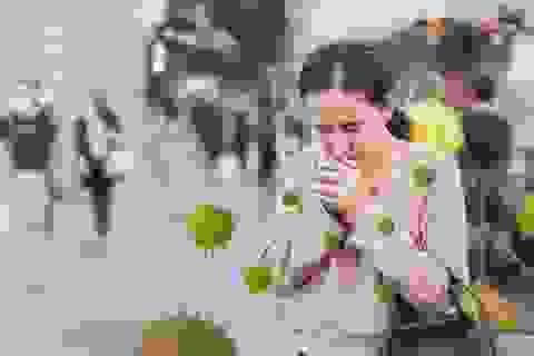 Gel rửa tay khô từ thương hiệu Lifebuoy chính thức đến tay người Việt