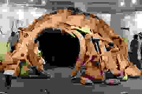 Bí ẩn vòng tròn xương voi ma mút mới được phát hiện ở Nga