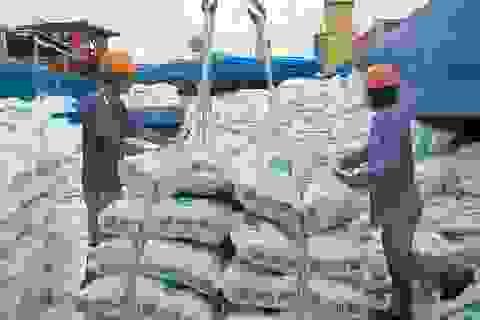 """Bộ Công Thương tiếp tục kiến nghị xuất khẩu gạo sau khi """"tính toán kỹ"""""""