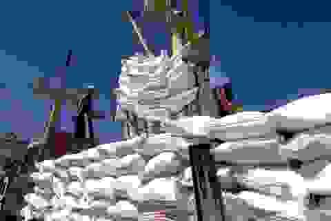 Bộ Công Thương đề xuất bỏ hạn ngạch, cho xuất khẩu gạo bình thường từ 1/5