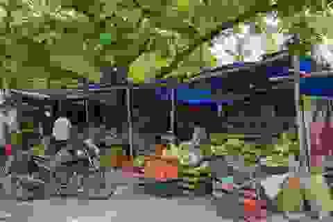 """Du học sinh Việt tại """"tâm dịch"""" New Dellhi: Ăn trứng thay thịt..."""