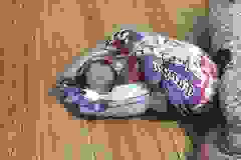 Trẻ sơ sinh còn nguyên dây rốn bị bỏ rơi bên đường