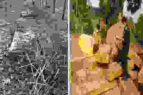 Liên tiếp phát hiện nhiều vụ tàng trữ gỗ lậu lớn tại huyện biên giới
