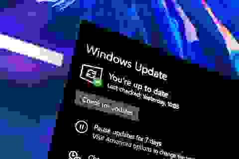 Windows 10 lại gặp lỗi khiến máy tính không kết nối được Internet