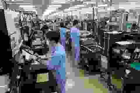 Nghệ An: Hoạt động xuất khẩu lao động ảm đạm vì dịch Covid-19
