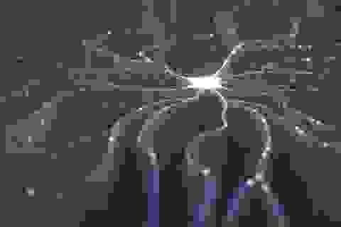 Công nghệ mới giúp dịch sóng não thành văn bản với lỗi tối thiểu