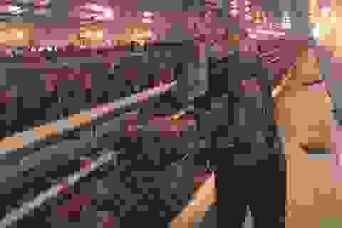 Lạ lùng chuyện nam thanh niên nuôi gà cho nghe nhạc thu nhập tiền tỉ