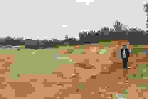 Bị phạt 350 triệu đồng vì bán hàng chục ngàn m3 đất lậu