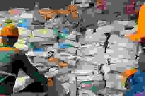 """Phát hiện kho chứa hơn 70 tấn lòng lợn bốc mùi sắp """"tuồn"""" ra thị trường"""