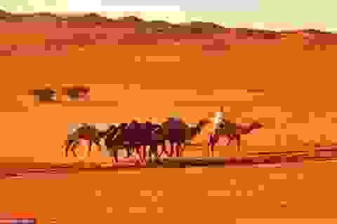Blogger du lịch và kế hoạch tương lai cho những chuyến xê dịch thú vị