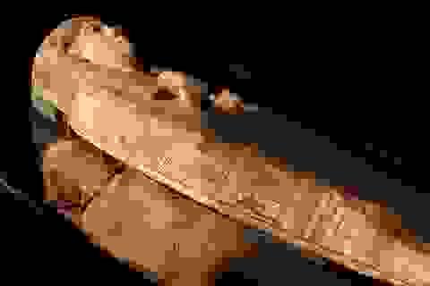 Bức tranh bí ẩn bên trong quan tài của xác ướp Ai Cập 3000 năm tuổi