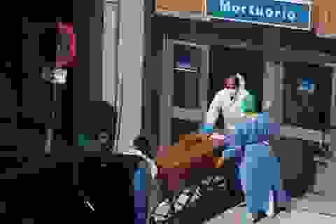 Tây Ban Nha có hơn 15.000 ca tử vong, Thủ tướng tuyên bố dịch đã đạt đỉnh