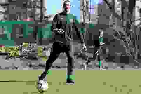Sau Ronaldo, Ibrahimovic cũng ra sân tập trở lại