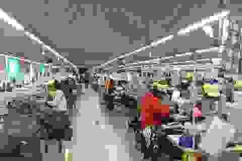 Hướng dẫn doanh nghiệp tại Nghệ An dừng đóng quỹ hưu trí và tử tuất