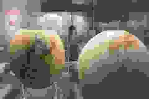 Con người đã vẽ lên bề mặt và bán trứng đà điểu từ hàng ngàn năm trước