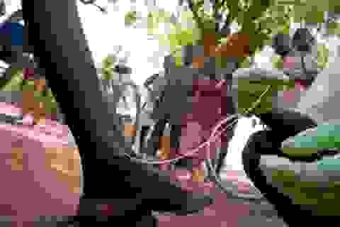 7 bệnh dịch nguy hiểm nhất thế giới