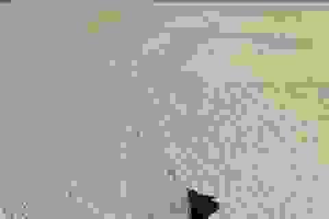NASA giải thích hiện tượng đá trượt bí ẩn ở Thung lũng Chết