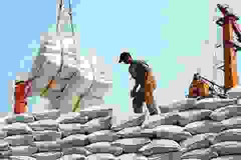 """""""Cuộc đua"""" tích trữ gạo trên toàn cầu: DN xuất khẩu Việt hưởng lợi?"""