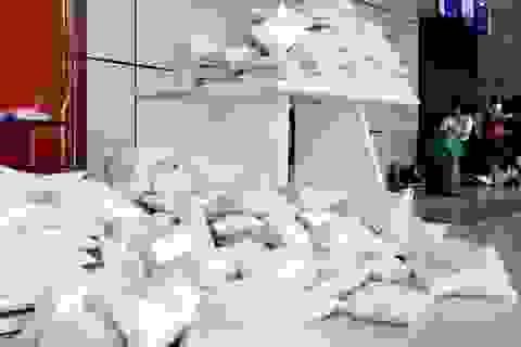 Sáng mai 16/4, ĐH Kinh tế quốc dân tổ chức tặng gạo giúp người nghèo