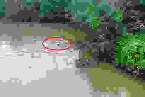 Người đi đường lao xuống sông sâu cứu nữ sinh nhảy cầu