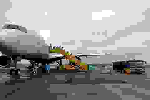 308 kỹ sư Samsung từ Hàn Quốc hạ cánh xuống sân bay Vân Đồn