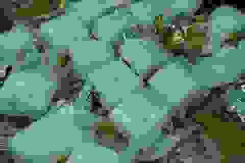Truy nã bị can chủ mưu vụ vận chuyển hơn 3 tạ ma túy