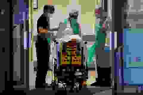Chuyên gia cảnh báo 40.000 người tại Anh có thể tử vong vì Covid-19