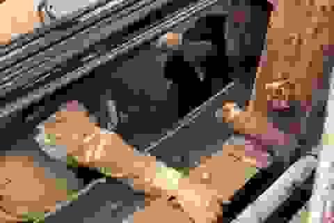 Chốt kiểm dịch kịp thời ngăn cản người đàn ông định nhảy cầu Long Biên