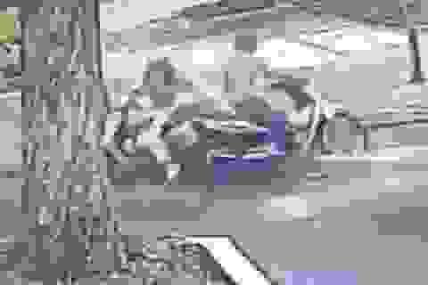 Mất việc vì dịch Covid-19, nam thanh niên đi cướp giật