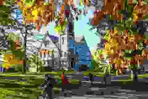 Top 10 trường đại học cung cấp khóa học trực tuyến hàng đầu nước Mỹ