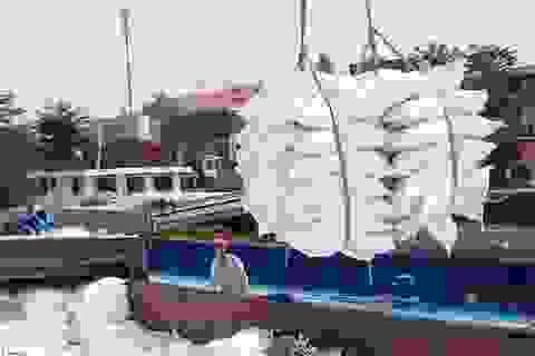 Thanh tra công tác quản lý nhà nước về xuất khẩu gạo trong 35 ngày