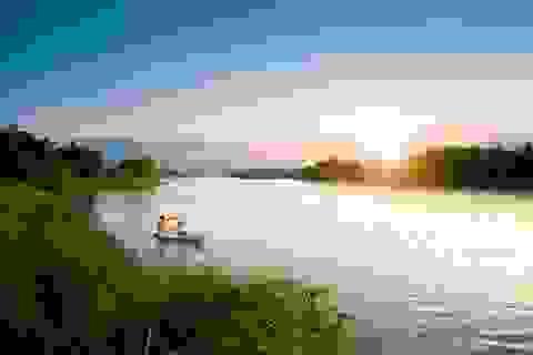 Khu đô thị tại Việt Nam có thiên nga, vịt trời đi lại tự nhiên trên đường như châu Âu