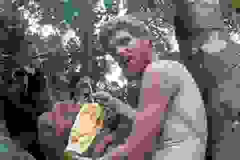 Kỹ sư Na Uy bỏ việc lương cao vào rừng sống cùng bộ lạc Indonesia