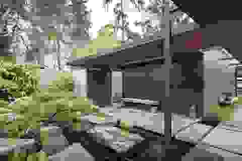Biệt thự của vợ chồng người Mỹ gây ấn tượng với hàng trăm cây bonsai độc lạ