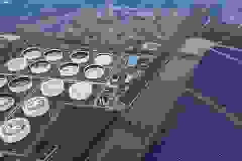 Mua nhiều nhất thế giới, Trung Quốc dửng dưng khi giá dầu lao thẳng đứng