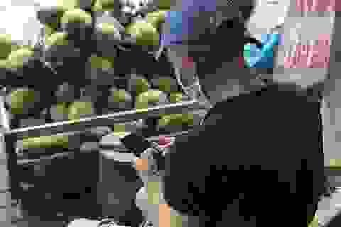 """Ông chủ """"tiếc rẻ"""" vì không biết dùng smartphone để bán hàng mùa dịch"""