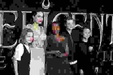 """Angelina Jolie: """"Con cái chỉ muốn bạn thành thật"""""""