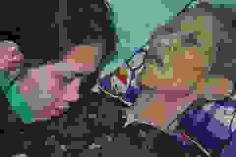 Nước mắt cô gái mồ côi cha chăm người mẹ khờ và bà ngoại thoi thóp