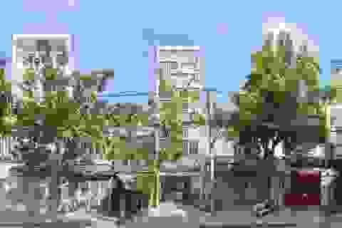 """Nhà phố """"ngập"""" cây xanh tách mình khỏi phố thị xô bồ ở TP. Hồ Chí Minh"""