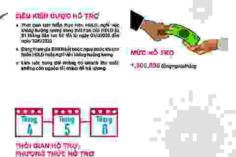 Bộ LĐ-TB&XH công bố 8 bộ nhận diện hình ảnh về gói hỗ trợ 62.000 tỷ đồng