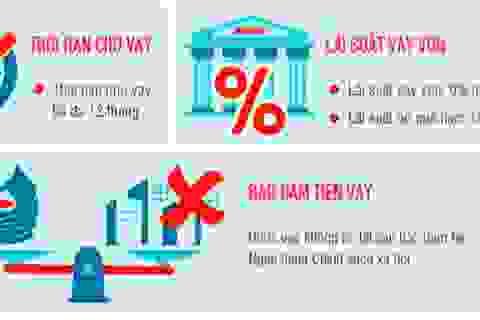 Infographics: Người sử dụng lao động cần điều kiện gì để vay vốn trả lương?